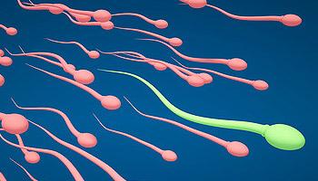schwanger ohne samenerguss an unfruchtbaren tagen
